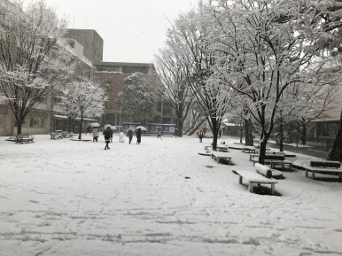 Snowy campus with students and snow dharma