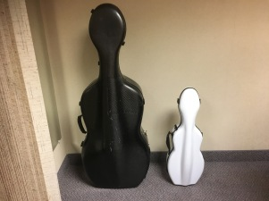 Cello and violin case. They don't skate but they sure are cute.