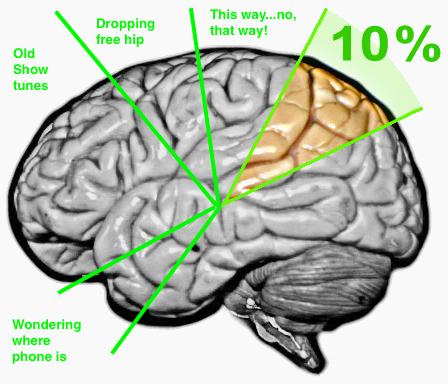 10_%_brain_myth_before